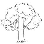 Szablon drzewa do druku za darmo