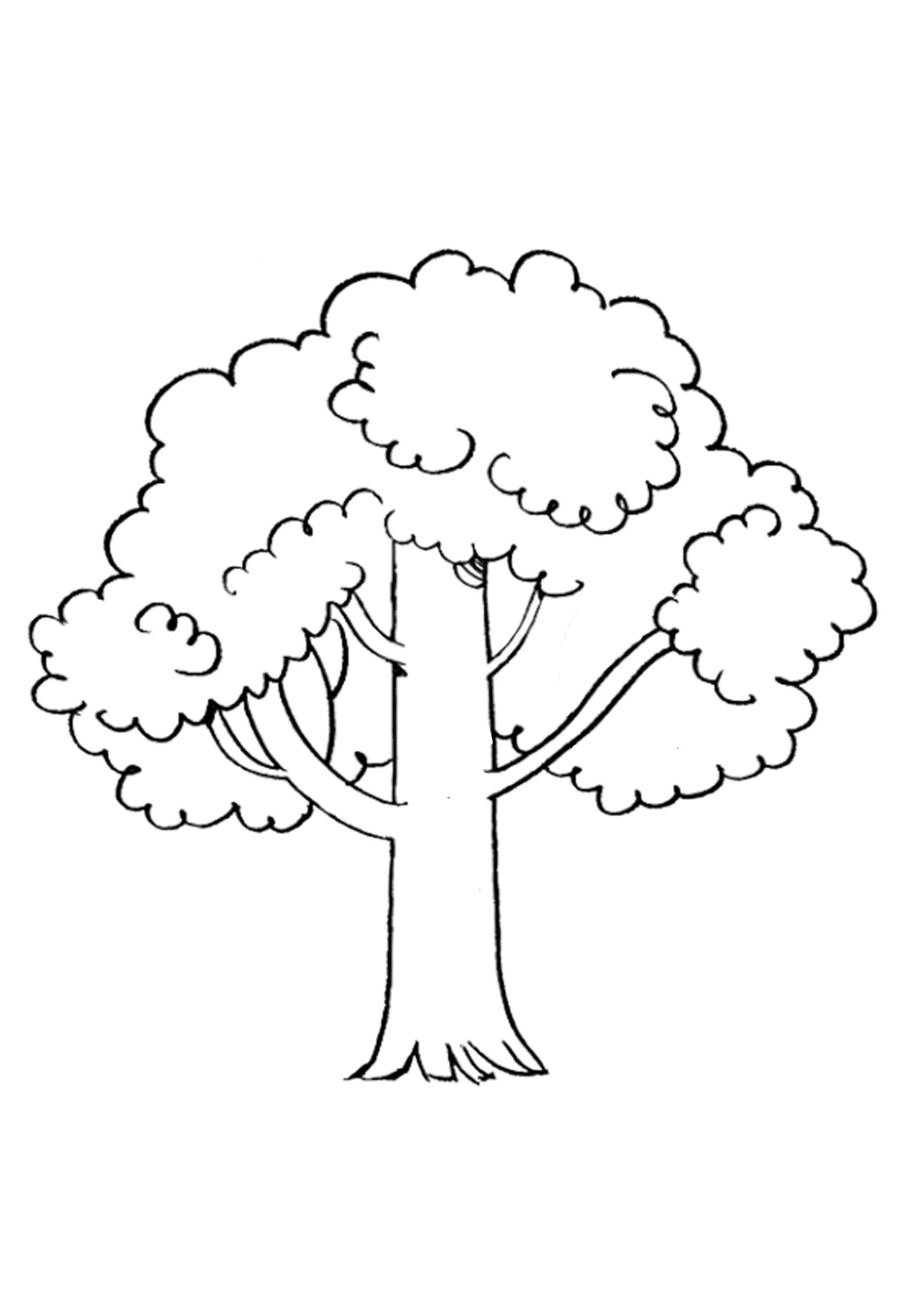 drzewo-szablon-do-druku-1
