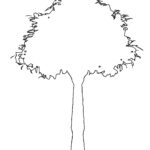 Drzewo - szablon do druku za darmo