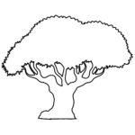 Drzewo - Szablon do druku