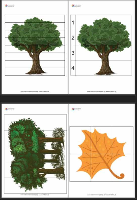 Dzień Drzewa - Puzzle do druku karty pracy