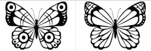 Motyl kolorowanki do druku