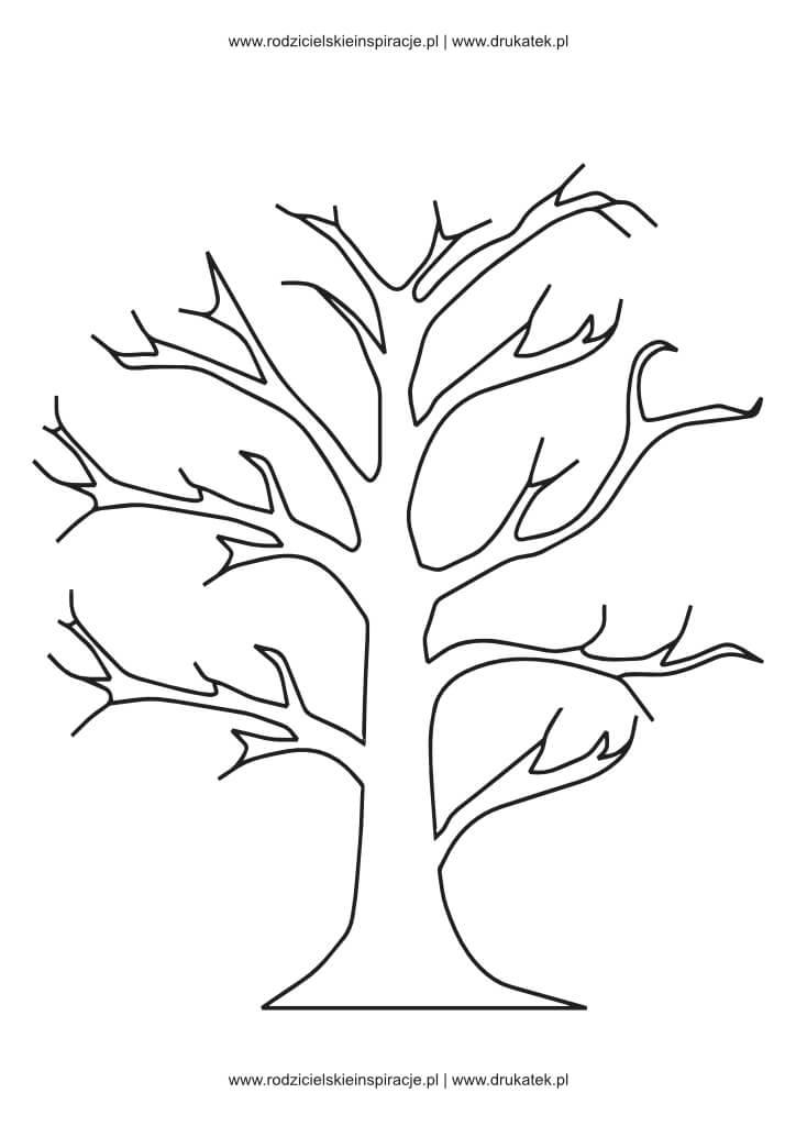 drzewo szablon rysunek