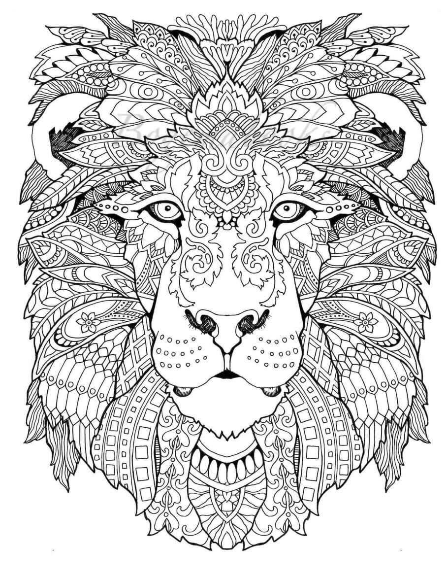 lew kolorowanka dla doroslych