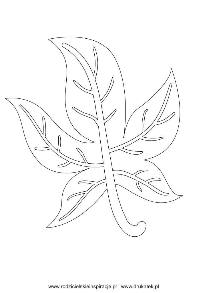 Szablon liścia kolorowanka